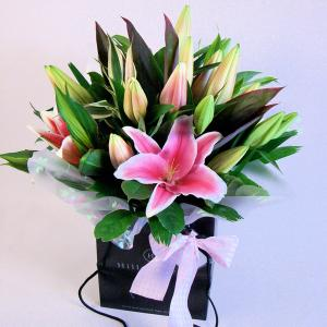 Oriental Pink Lilly Hand Tied