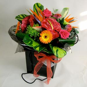 Vibrant Splash Hand Tied